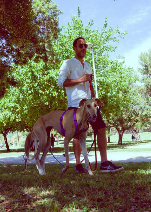 adiestrador-canino-valencia_DSC5850v2