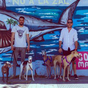 adiestrador-canino-valencia_DSC6260