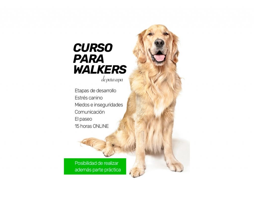 CURSO-PARA-WALKERS