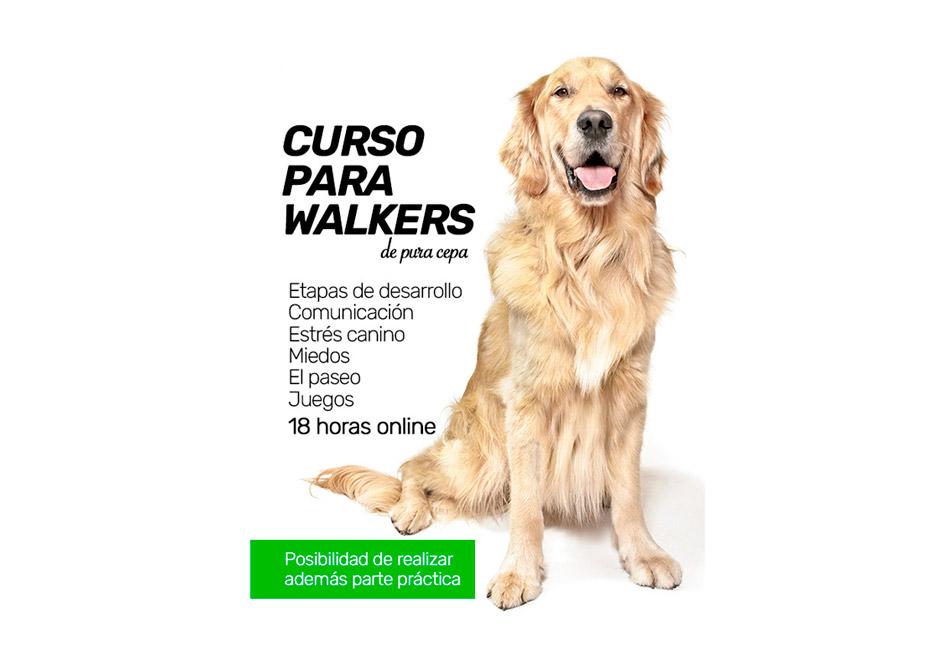 CURSO-PARA-WALKERS-h2