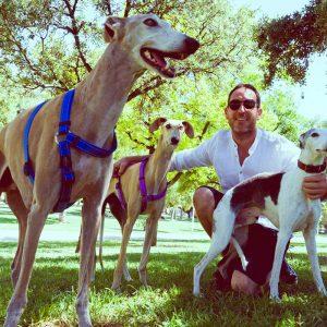 adiestrador-canino-valencia_DSC5895
