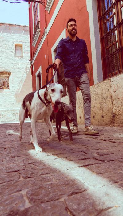 adiestrador-canino-valencia_DSC6376